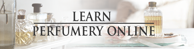 online-perfume-course