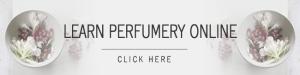 Learn Perfumery Online 6